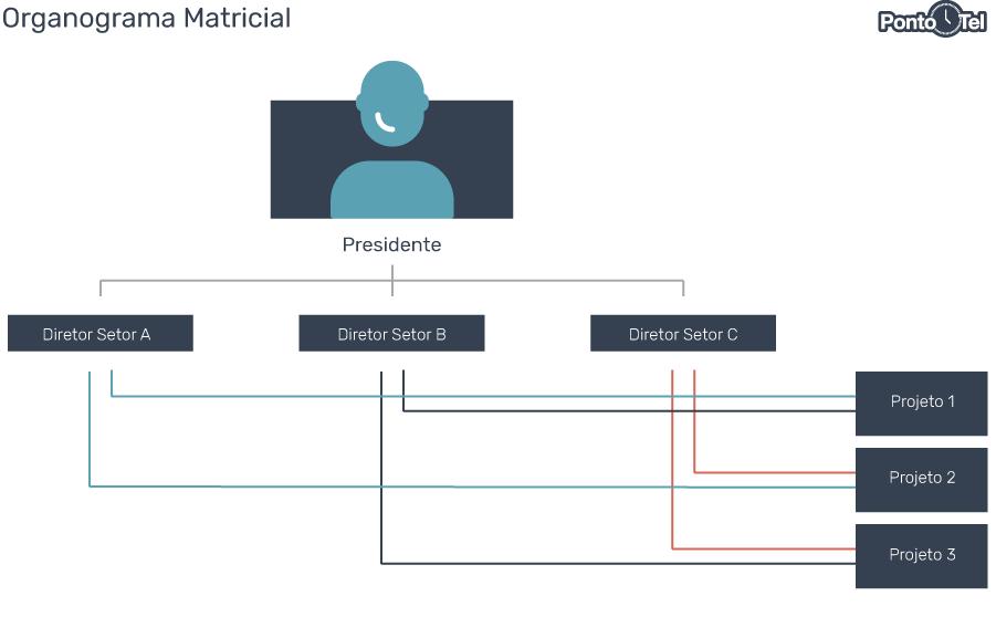 organograma de uma empresa matricial